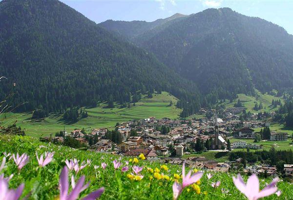 Italy > Trentino Alto Adige